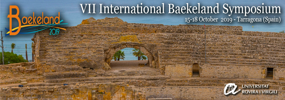 VII International Baekeland Symposium