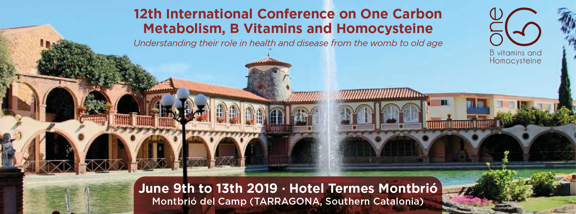 12th International Conference on One-Carbon Metabolism, B Vitamins and Homocysteine